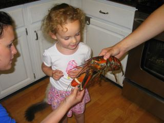 Gaby and lobster