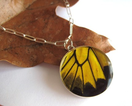 Butterflywingnecklace