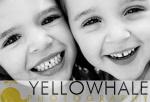 Yellowhale_2